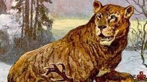شیر غارنشین (cave lion)
