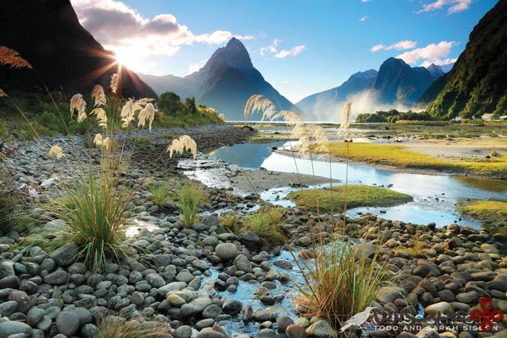میلفورد ساند(milford sound)، جزیره جنوبی، نیوزیلند