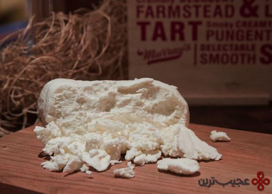 پنیر بز (شِوغ)