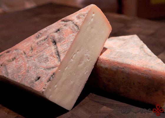 پنیر تالجیو