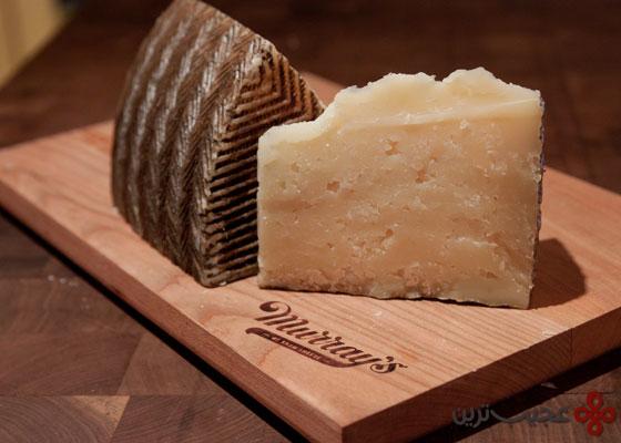 پنیر مانچگو