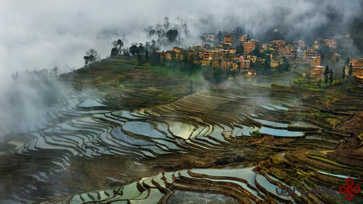 4 مزارع تراسی شکل برنج، یونان (yunnan)، چین2