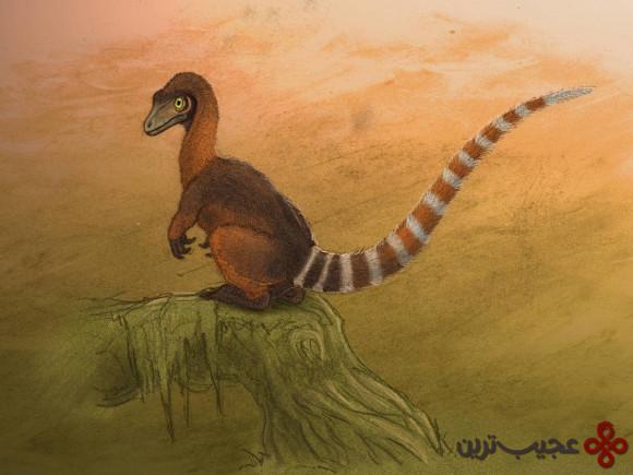 sinosauropterxy