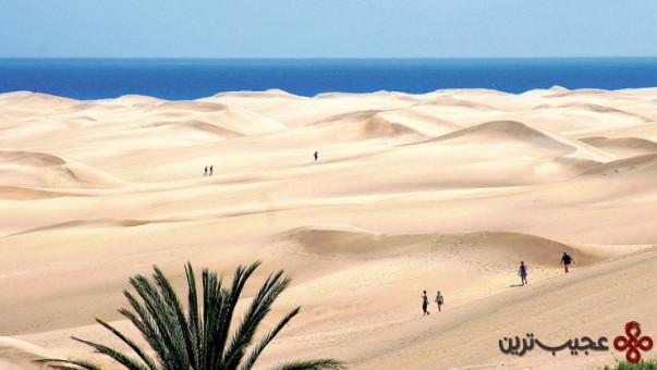 جزایر قناری، اسپانیا 2
