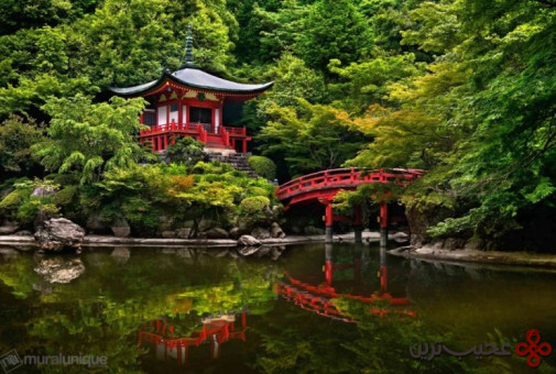 جنگل daigo ji 2