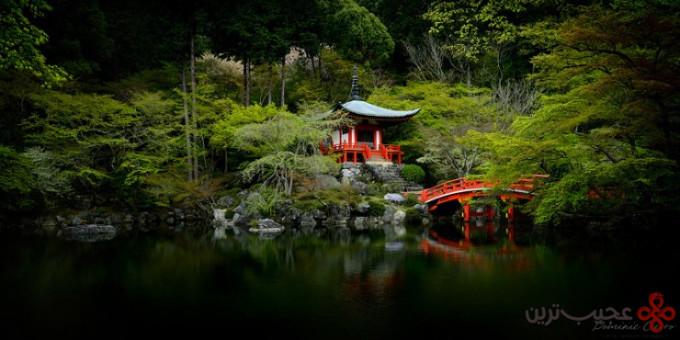 جنگل daigo ji 3