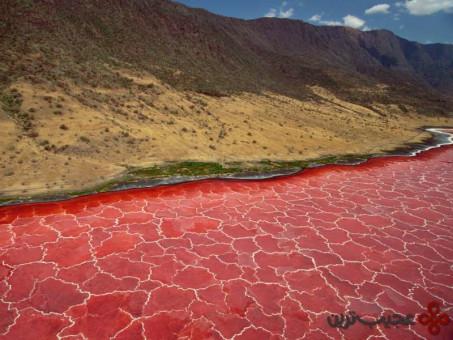دریاچهٔ ناترون، ماندولی، تانزانیا