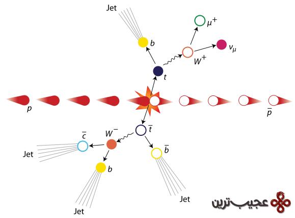 عکس کاور کشف ذره کوارک سر در آزمایشگاه فیزیک فرمی