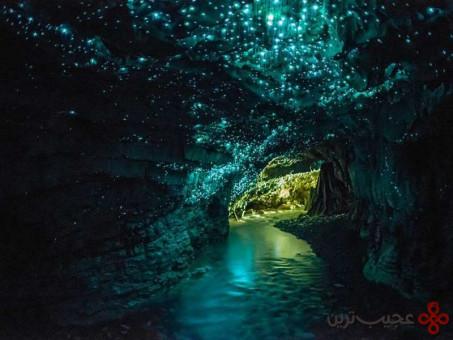 غارهای کرم شبتاب، وایتومو، نیوزیلند