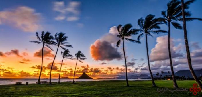 هاوایی 3