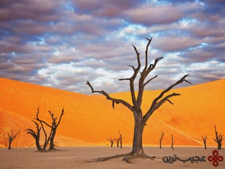 پارک نامیب ناوکلوفت، نامیبیا