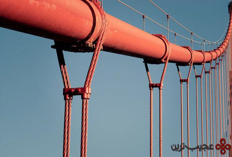 ۴ با میزان کابلهای استفاده شده در پل گلدنگیت میتوان کل جهان را سه دور بستهبندی کرد