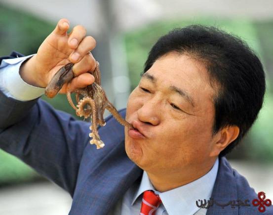 skorea culture gastronomy octopus