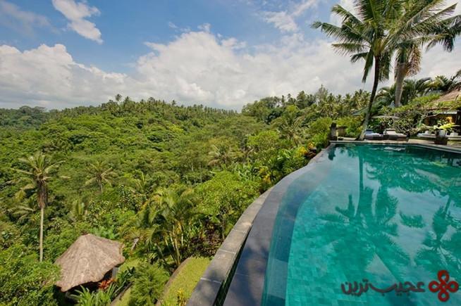 استخرهای باغهای معلق یوبود (ubud)