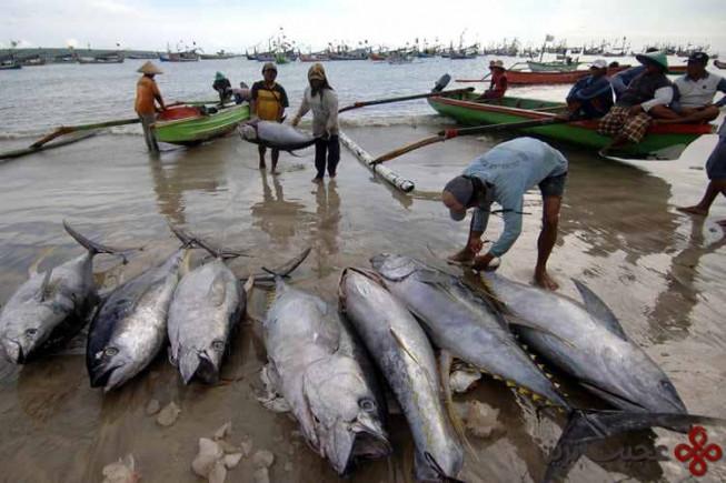 اندونزی (سالانه ۳٫۱۱ میلیارد دلار)