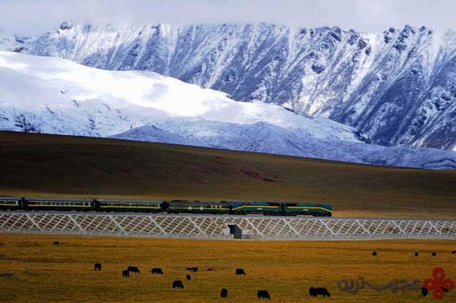 ایستگاه کوه تانگولا (tanggula mountain)، تبت