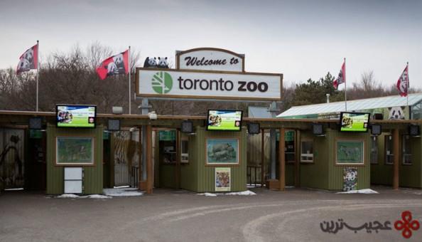 باغوحش تورنتو