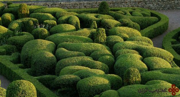 باغ سلطنتی marqueyssac، وزاک (vézac)، دپارتمان دوردونه (dordogne)، فرانسه