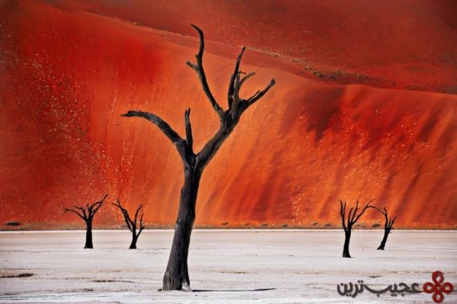 بیابان نامیب، نامیبیا 4