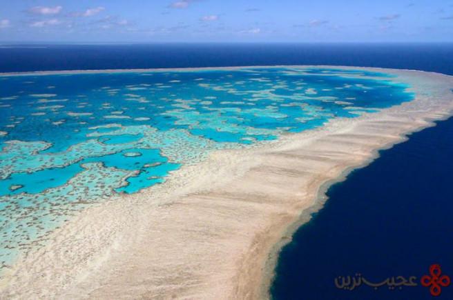 جزایر بزرگ مرجانی، استرالیا ۴