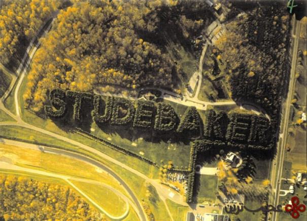 جنگل استودبیکر (studebaker)