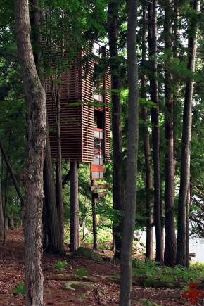 خانهای درختی در muskoka، اونتاریو، کانادا