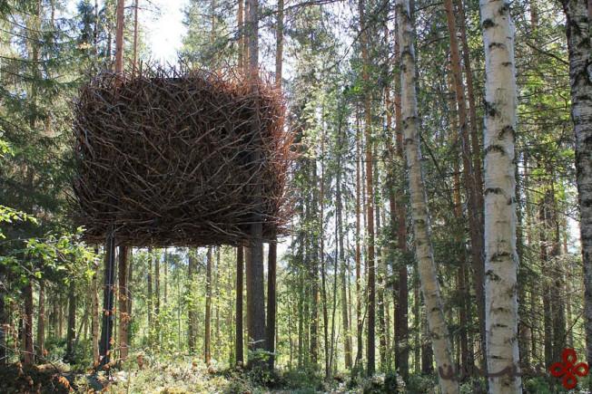 خانهی درختی آشیانهی پرنده، سوئد