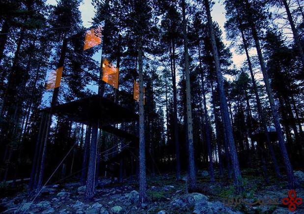 خانهی درختی آینهای
