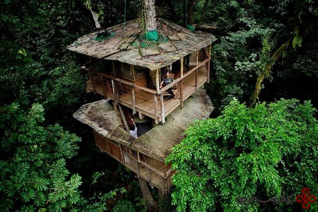 خانهی درختی دوستدار محیط زیست finca bellavista، کاستاریکا