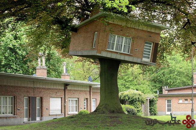 خانهی درختی سنیور سنتر، خنت (ghent)، بلژیک