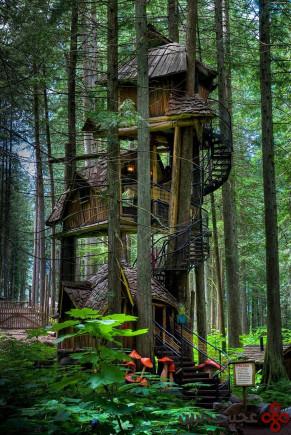 خانهی درختی سه طبقه، بریتیش کلمبیا، کانادا