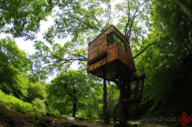 خانهی درختی طراحی شده توسط تاکاشی کوبایاشی، ژاپن