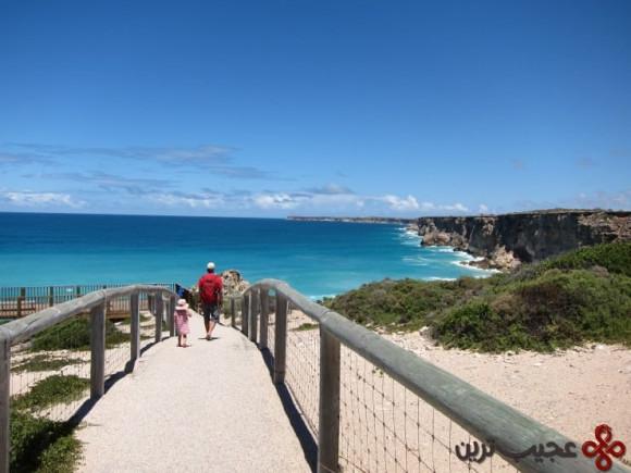 خلیج بزرگ استرالیا 4
