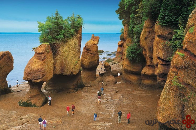 خلیج فاندی (bay of fundy)