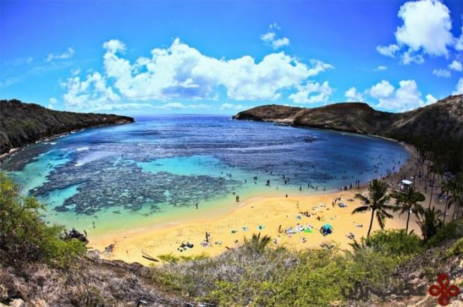 خلیج hanauma، جزیرهی اوآهو، هاوایی 3
