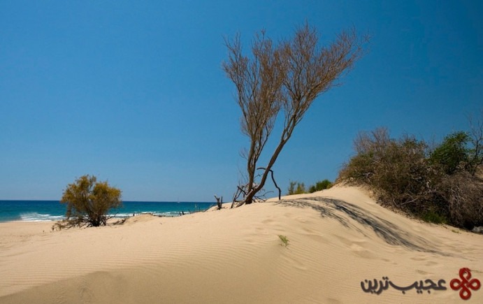 ساحل پاتارا (patara beach)