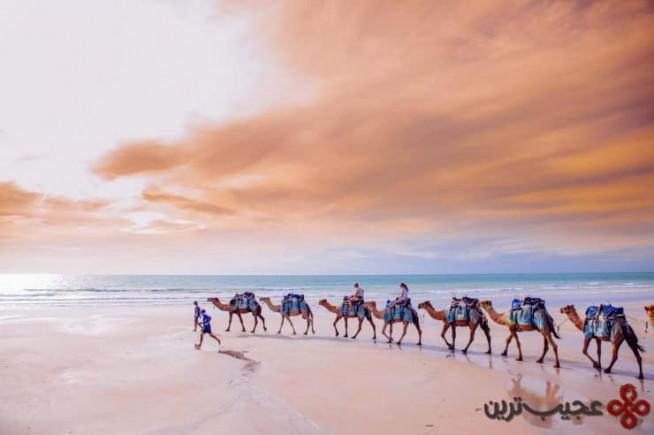 ساحل کیبل (cable)، بروم (broome)، کیمبرلی، استرالیا4