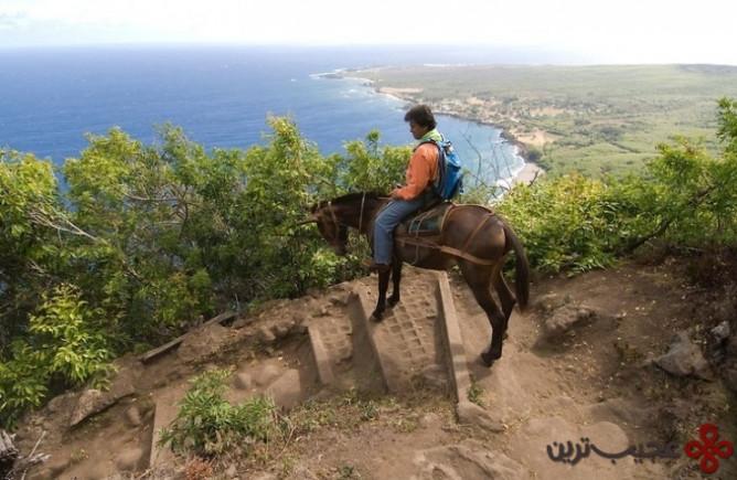 صخرههای مولوکای (molokai)، هاوایی4