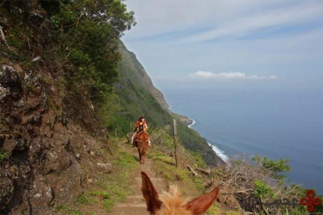 صخرههای مولوکای (molokai)، هاوایی5