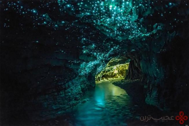 غارهای وایتومو (waitomo)، کینگکانتری (kingcountry)، نیوزیلند