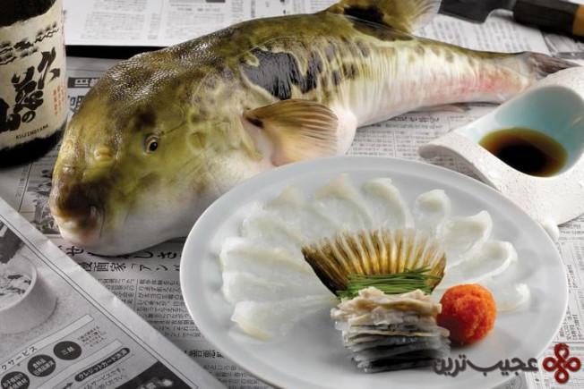 ماهی پوفر