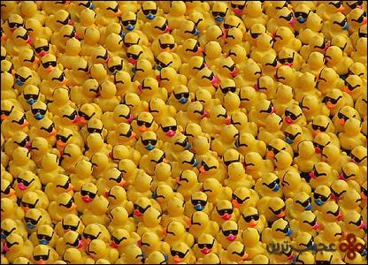 مسابقه اردکهای پلاستیکی