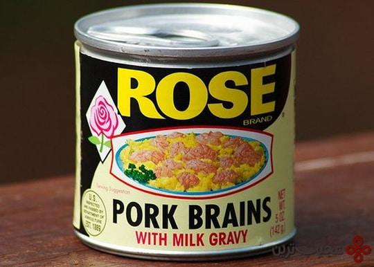 مغز خوک