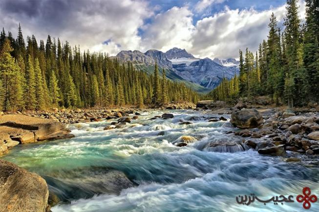 پارک ملی سوئیس، سوئیس