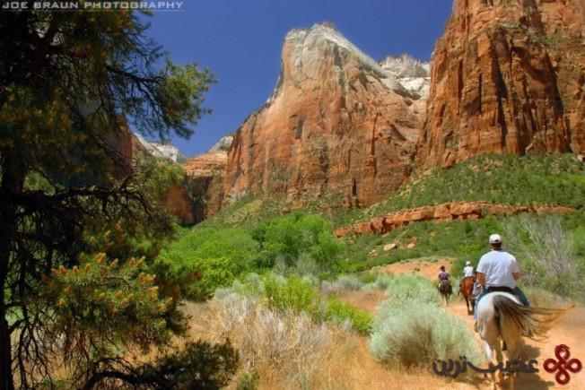 پارک ملی صهیون در یوتا، ایالات متحده آمریکا4