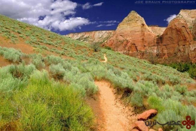 پارک ملی صهیون در یوتا، ایالات متحده آمریکا5
