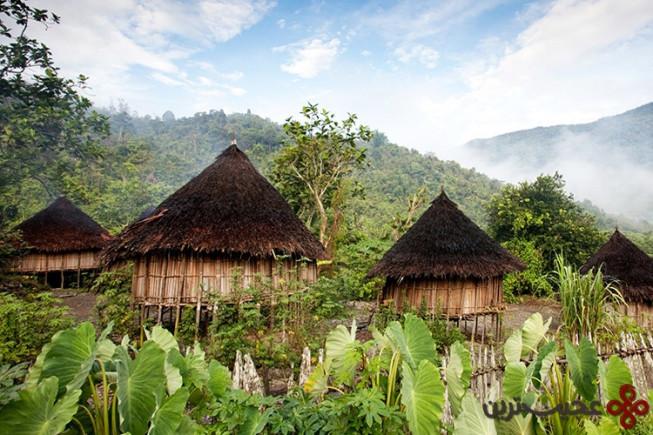 پاپوآ گینهی نو