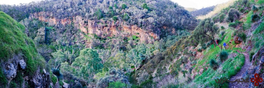 چمبرز گالی (chambers gully)، آدلاید، استرالیا