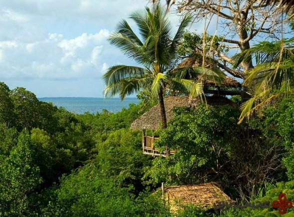 کله مینی در جزیرهی کله، مجمعالجزایر مافیا، تانزانیا