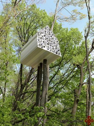 یک خانهی درختی برای انسانها و پرندگان، مرکز مموفوکو آندو (andu momofuku)، ژاپن